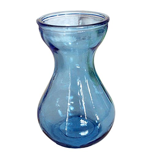 Ruikey boca ancha de vidrio jacinto hidroponía florero pequeño vaso
