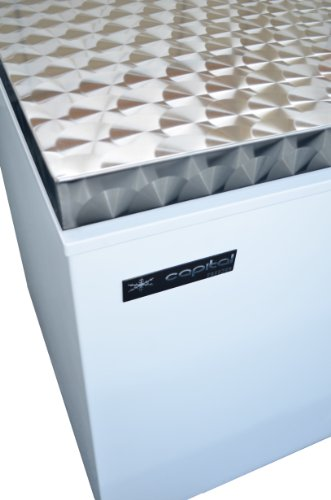 Capital Products Midas 650 Chest Freezer Stainless Steel –