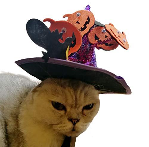 Iris Sprite Disfraz de Murciélago de Halloween para Gatos Halloween Gatos Disfraz de Gato Sombrero de Bruja Sombrero de Calabaza araña (Calabaza Púrpura)