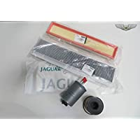 Jaguar Neu Original X Type Benzin Diesel Kombi Kraftstoff Einfüllstutzen Klappe