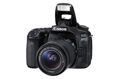 Canon EOS 80D 24.2MP Digital SLR Camera (Black) with EF-S 18-55mm f/3.5-5.6 Image Stabilization STM Lens Kit