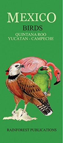 Mexico: Birds - Quintana Roo, Yucatan, Campeche