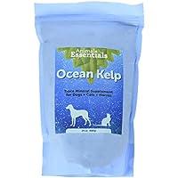Animal Essentials Discontinuada 040,416 Orgánica océano Algas 24 oz