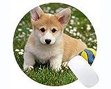 Yanteng Customized Runde Mauspad, Shih Tzu Dog Hunde für Mobile Rutschfeste Gummi-Mauspad Gaming Mouse Pad