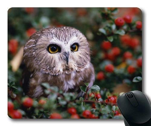 Gaming Mouse Pad, Eule Mond Eule Tapeten, Mauspad mit genähten Kanten