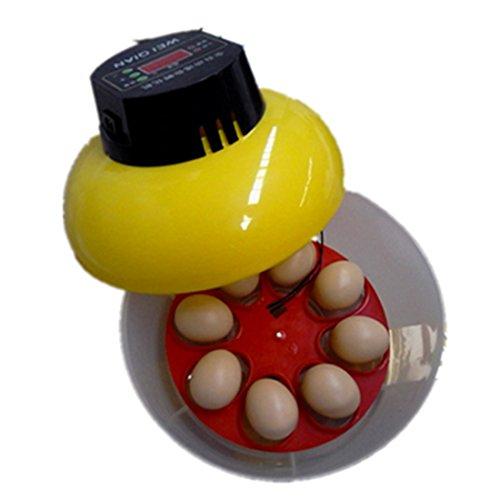 Mini Automatische Inkubator 8Eier Ente Gans Vogel Inkubator Familie Hatch Werkzeug 220V