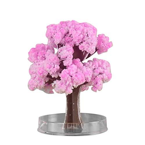 Magischer wachsender Papierbaum Sakura Papierbaum DIY Magie