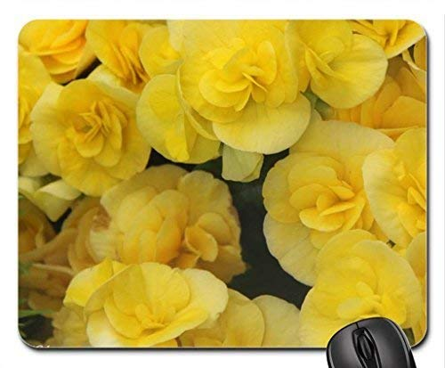 Yellow Flowers at Victoria Garden Mouse Pad,Flowers Non-Slip Mouse Pad Office Competitive Mouse Pad 18X22cm