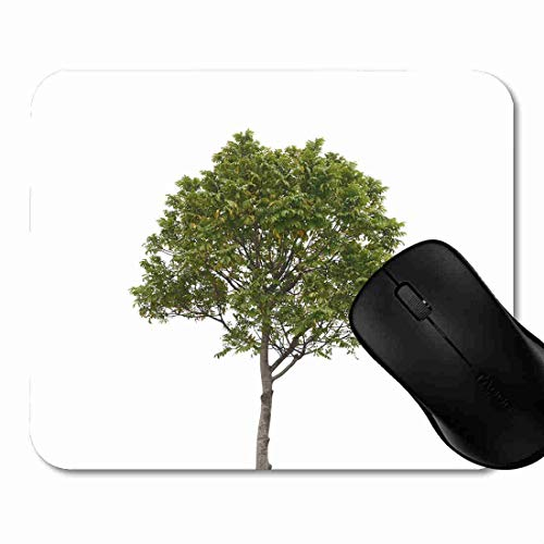 Mauspad Park-Grün-Ausschnitt-Baum-Weiß Forest Lawn Rutschfeste Gummi Basis Mouse pad, Gaming und Office mauspad für Laptop, Computer PC 1H1789