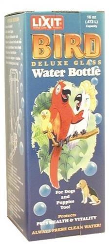 Glas-hund-wasser-flasche (Lixit 16Oz de Luxe Glas Wasser Flasche für große Vögel (Aras etc.) 5/20,3cm Spitze keine 622)