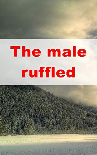 The male ruffled  (Welsh Edition)