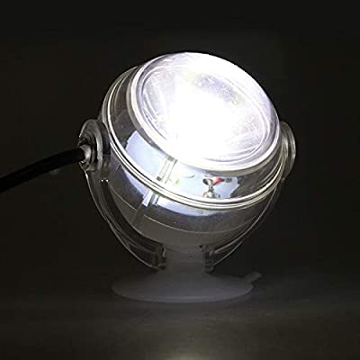 Lampe LED sous-Marine intérieure étanche LED Aquarium Light for Corail récifal Fish Tank Submersible Aquarium Light Spot Lamp Lampes de réservoir de Poisson