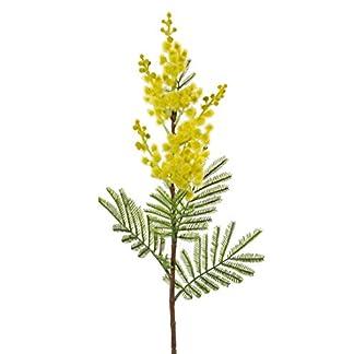 artplants.de Set de 3 x Rama de Acacia Plateada Artificial MENSON, Amarilla, 60cm – Planta Decorativa – Pack de Ramas sintéticas