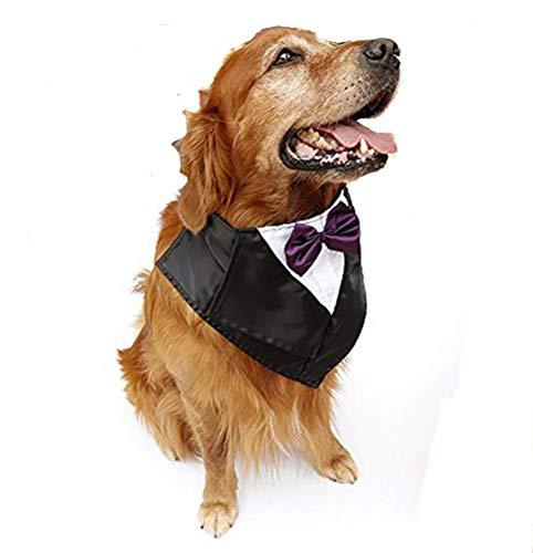 DAN Große Hund Tuxedo Kostüm - Katze Hochzeit Bandana Halsband Mit Fliege Für Halloween - Golden Retriever Sheepdog Kleidung, Einstellbar Und Handgemacht,Purple