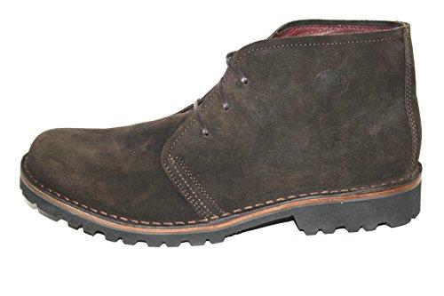 Loints of Holland , Chaussures de ville à lacets pour homme marron marron Marron
