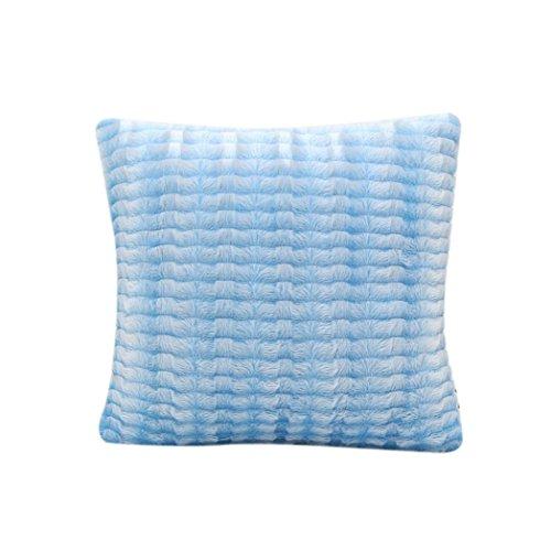 Decorie Simplicity Elegant Plush Throw Cushion Cover for Sofa Home Decor (Sky Blue)