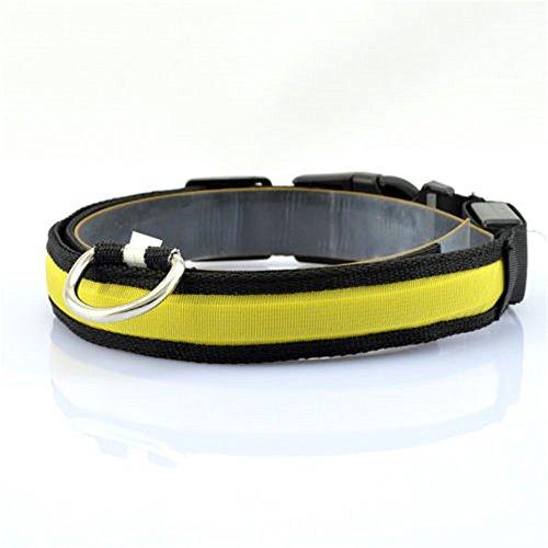 Minkoll Haustier-Hundekatzen-Sicherheits-Kragen, LED Nylon-helles Haustier-Katze-Hundesicherheitsblinkendes Glühen-Kragen, Gelb-L -