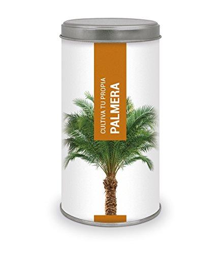 Garden Pocket - Kit Cultiva tu propia PALMERA