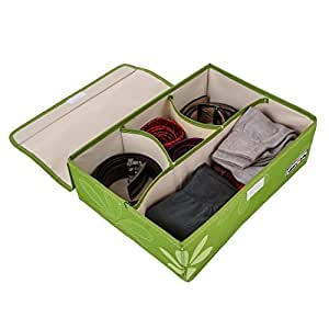 UberLyfe 4 Cell Drawer Closet Divider Storage Box Storage Boxes for Clothes, Shoes, Undergarments, Bra, Socks with Lid Colour Green (UW-001678-GRWL4C)