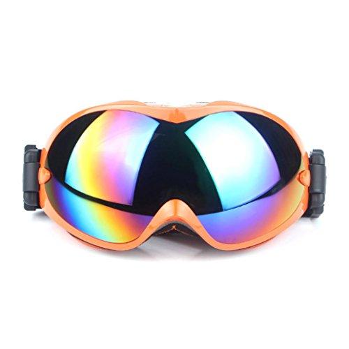12shage New Neue Ski Snowboard Motorrad staubdichte Sonnenbrille Brille Rahmen Brillen (D)