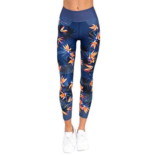 Athletische Laufhose (Leggings Damen, ABsolute Damen Hohe Taille Leggings Sporthosen Athletische Laufhose Capris (L, Blau))