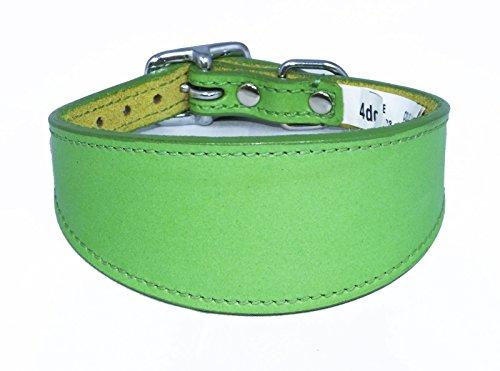 35,6-43,2 cm Uni Vert en Cuir Collier pour lévrier