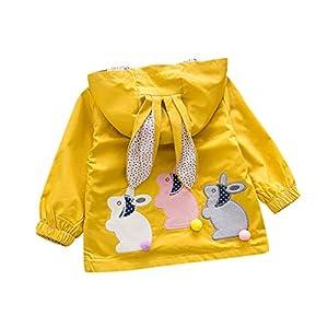 ZHMEI Niños Chaqueta | Niño pequeño Bebé Niños Niñas Oreja de Conejo con Capucha A Prueba de Viento Abrigo Outwear Ropa casual12 Meses - 4 años 12