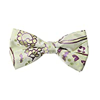 DBD7B11A Light Green Purple Patterned Microfiber Males Bow Tie Elegant For Wedding Pre-tied Bow Tie By Dan Smith