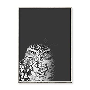 FORMAT 30 x 40 Kunstdruck Poster GRUMPY OWL -ungerahmt- Vogel, Eule, skandinavisch, nordisch