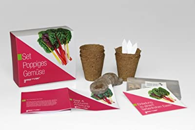 Set Poppiges Gemüse - die ausgefallene Geschenkidee: Selbst säen, züchten und ernten - bringt Farbe in die Küche! von GROW and SEE - Du und dein Garten