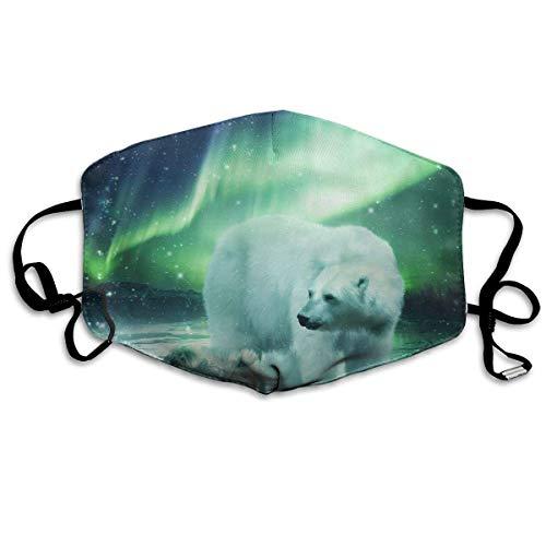 Northern Lights Polar Bear Classic Crew Dustproof Earloop Face Masks for Women Men, Anti Flu Pollen Germs Climbing Climbing Half Face Mouth Mask - Anti Allergy Face and Nose Cover - Womens Polar Bear