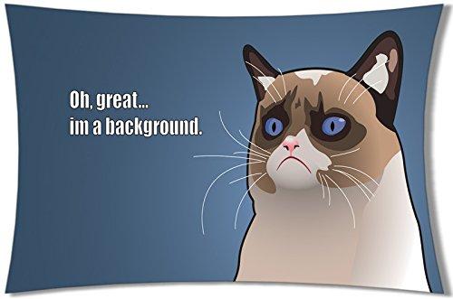 decemberloo Creative Katze Kissenbezüge Baumwolle Überwurf Kissenbezügen, 50,8x 76,2cm, color 16, 20x30inch