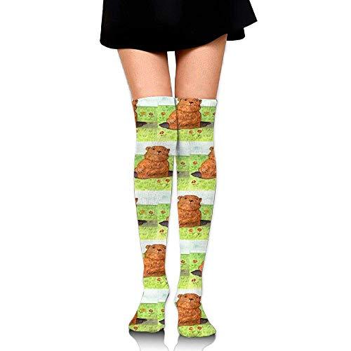 vbndfghjd Whimsical Groundhog Day Out Training Socks Crew Athletic Socks Long Sport Soccer Socks Soft Knee High Sock Compression Socks for Men Women