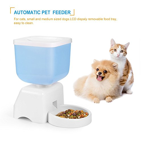 Automatische Pet Feeder LCD-Anzeige 5 Liter Kapazität Automatisierte Futterspender mit Sprachaufzeichnungsanlage und Timer Programmierbar für kleine Tiere Hunde und Katzen Eimer Feeder