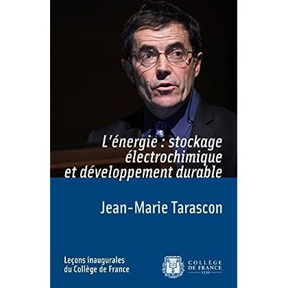 L'énergie: stockage électrochimique et développement durable (Leçons inaugurales t. 216)
