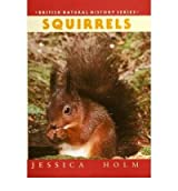 [ Squirrels ] [ SQUIRRELS ] BY Holm, Jessica ( AUTHOR ) Jul-22-2009 HardCover