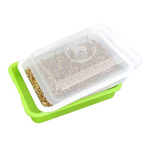 belukies Samen-Sprießer-Behälter-Kinderzimmer-Behälter für Sämlinge Weizengras-Züchter-Pflanzer-Hydroponik-Samen-Keimungs-Behälter-Platte für Gartenhaus