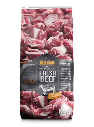 Belcando Mastercraft Fresh Beef [6,2kg] Trockenfutter für Hunde | 80% Frischfleisch | Hundefutter getreidefrei | sortenrein | für alle Rassen