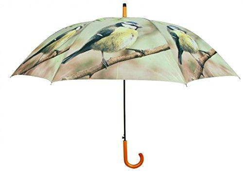 Regenschirm Stockschirm mit Holzgriff grün- braun Blaumeise auf Ast