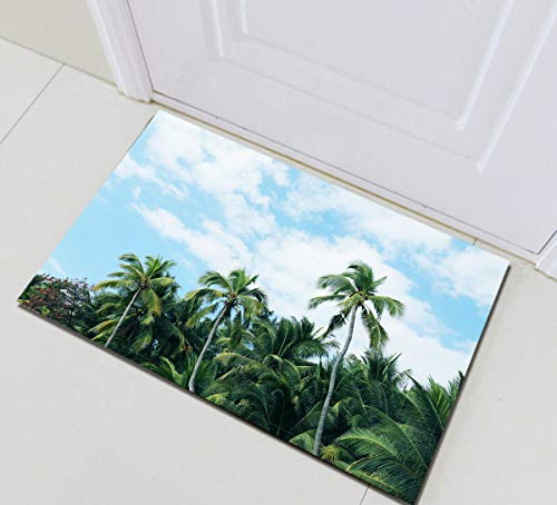 EdCott Tropische Palmen Blauer Himmel Flanell Innendekorationsmatte Außentür Front Schlafzimmer Teppich Küchentürmatte Badezimmermatte 40x60cm Haushalt Quadratmatte Farbe Persönlichkeit -
