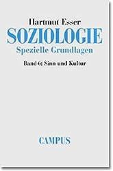 Soziologie. Spezielle Grundlagen, Band 6: Sinn und Kultur