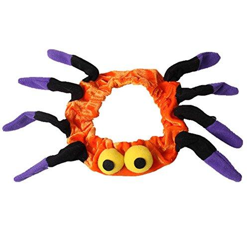 üm Kleidung Hunde Spinne Stirnband Hut Katze Kragen Kappe Karneval mit Ohren Zubehör Orange (Kombinieren Kostüme)