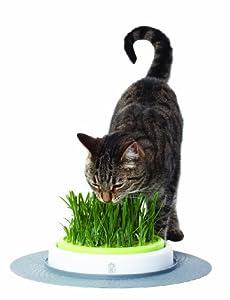 Catit Senses Grass Garden, Grass Garden and Grass Garden Refill Pack