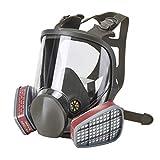 ENJOHOS Vollmaske mit Filter Anti Nebel Atemschutzmaske für Dämpfen Staub Farbe EN-Sicherheit Zertifiziert