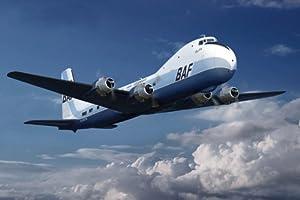 Roden - Juguete de aeromodelismo escala 1:48 (ROD0305)