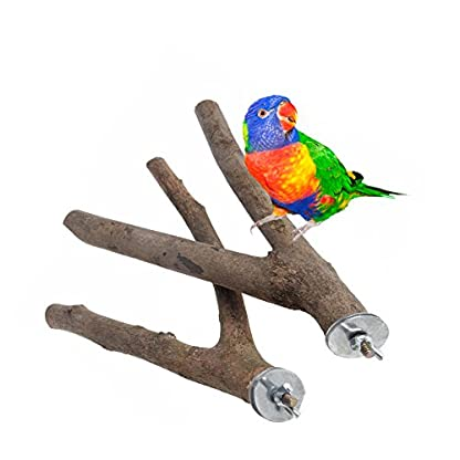 Dairyshop 1Pc Parrot Raw Wood Fork Stand Rack Toy Hamster Branch Perches For Pet Bird Cage 2
