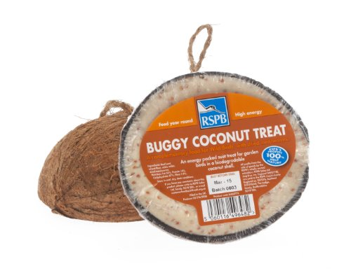 RSPB Buggy Coconut Shell Treats (Box of 20)