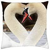 Not afraid Swan - Throw Pillow Cover Case 18 X 18 Inch