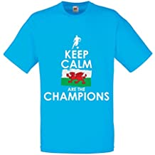 N4513 Männer T-Shirt Keep Calm, Wales are the Champions!