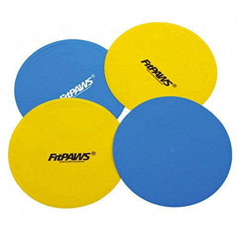ball-dynamics-fptarg-fitpaws-targets